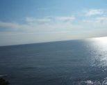 龍馬を育てた海